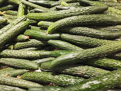 疫情下的乌鲁木齐市场蔬菜供应有保障:日销蔬菜3000余吨