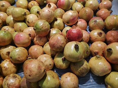 疾控中心发布果蔬配货、运输、售卖、食用等环节防疫指引