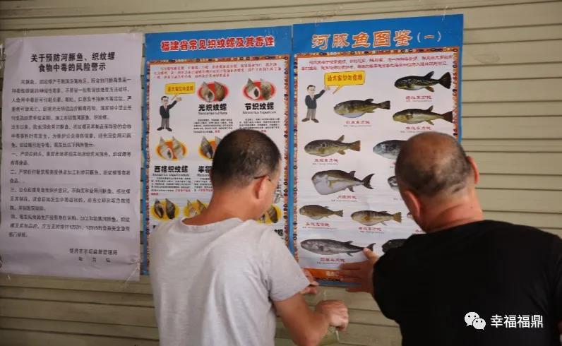 食品安全大检查!爱吃海鲜的你要远离河豚、织纹螺