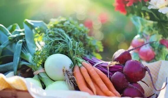 低GI食品什么意思?常吃低GI食品可以减肥吗?