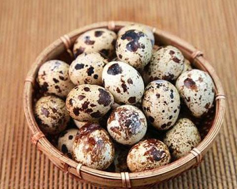 鹌鹑蛋都有哪些功效和作用?你不能错过哦!!