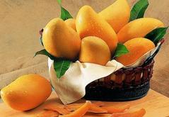 芒果的功效与作用知多少,禁忌又有哪些