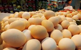 人造鸡蛋能吃吗,如何和真鸡蛋一起辨别