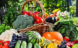 蔬菜保鲜小窍门知多少,用对方法天天都吃新鲜的