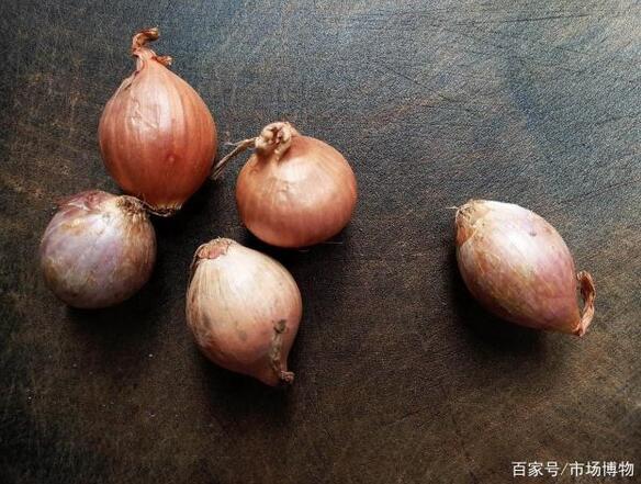 广东干葱头和毛葱,不要再认错了