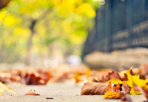 健康饮食的小标准,秋季应该这样吃哦!