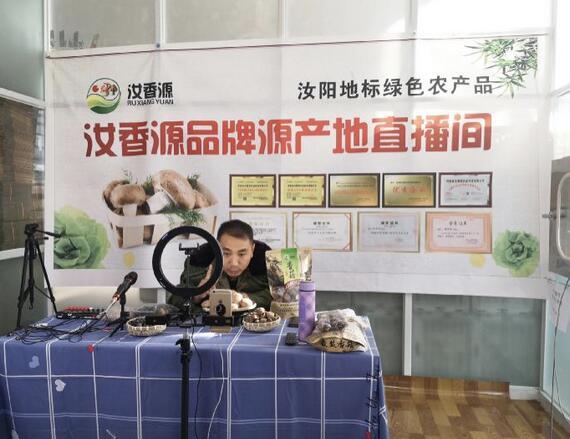 走进河南汝阳香菇产业,走进农村电商